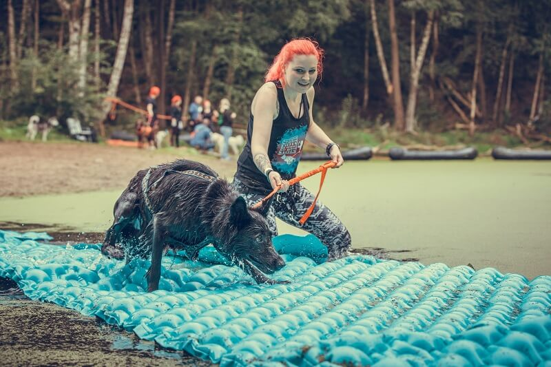 Camp Canis Wingst 2019 | Cani Cross | Zughundesport | Sport mit Hund | Foto: Kabo-Photography